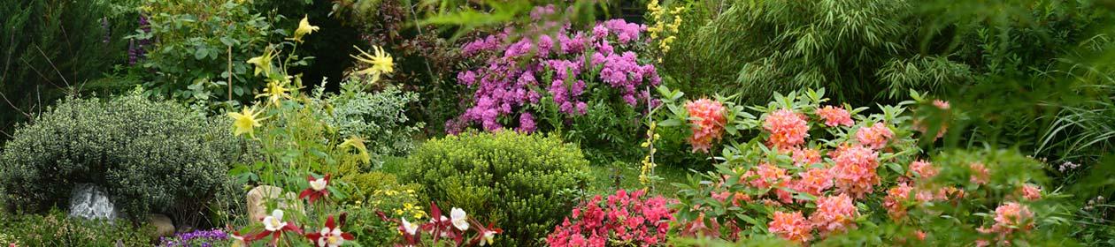 Garten Niedersachsen