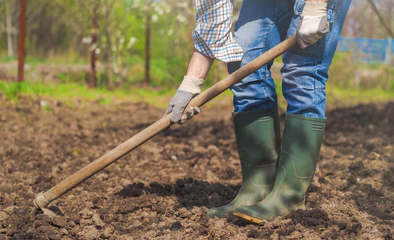 Gartenbau Erding Bayern