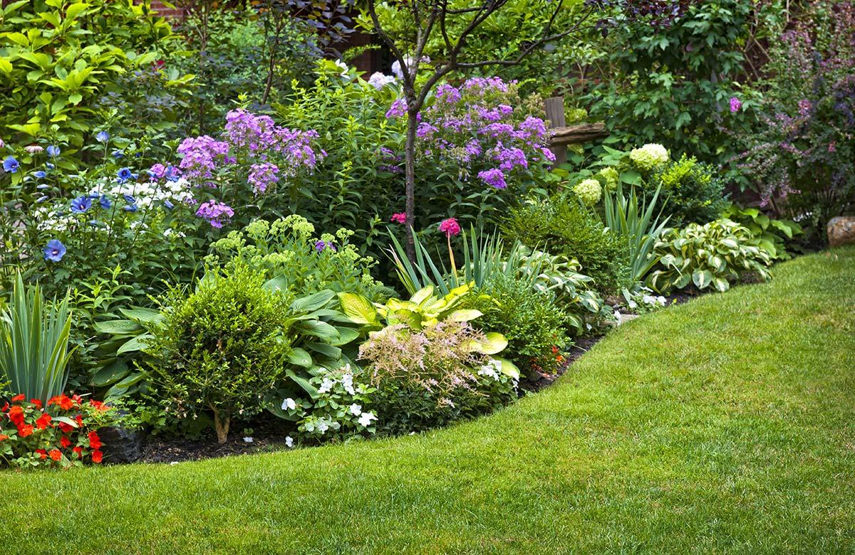 Gartengestaltung mit Rasenfläche und Blumen