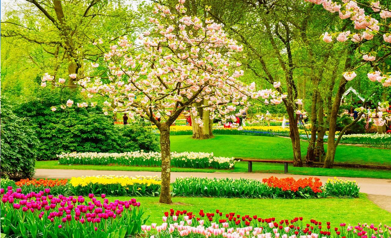 Gartengestaltung Bocholt Nordrhein-Westfalen