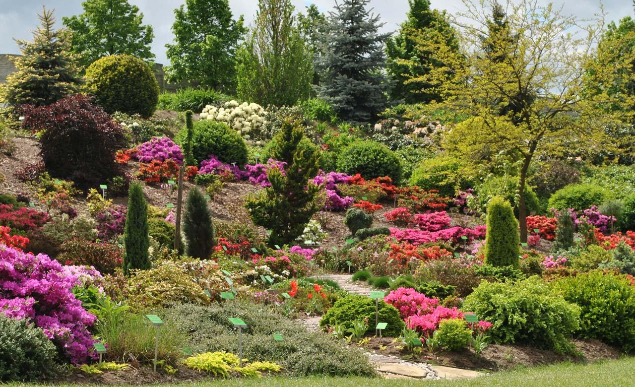 Gartengestaltung Delbrück Nordrhein-Westfalen