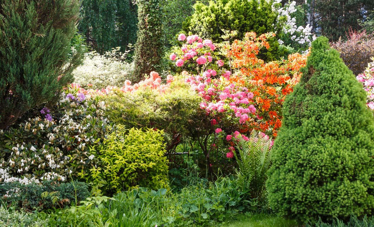 Gartengestaltung Ratingen Nordrhein-Westfalen