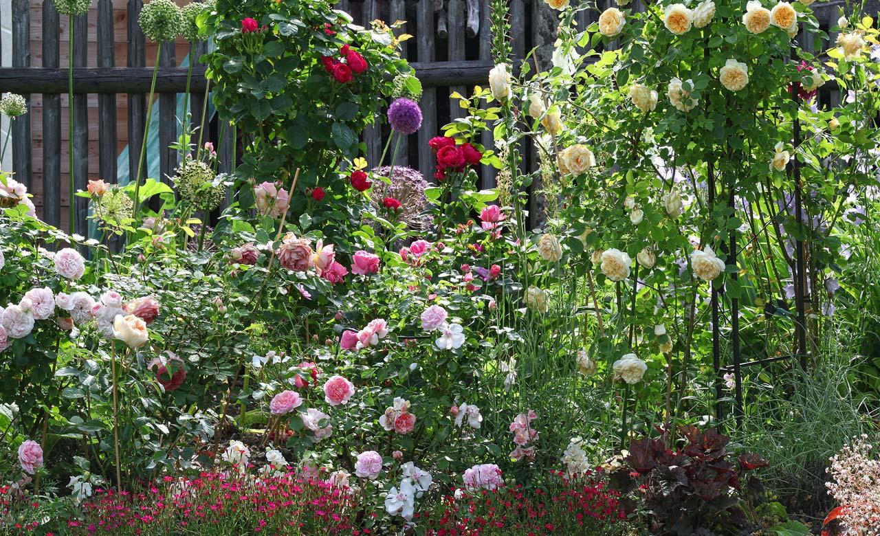Gartengestaltung Schmallenberg Nordrhein-Westfalen